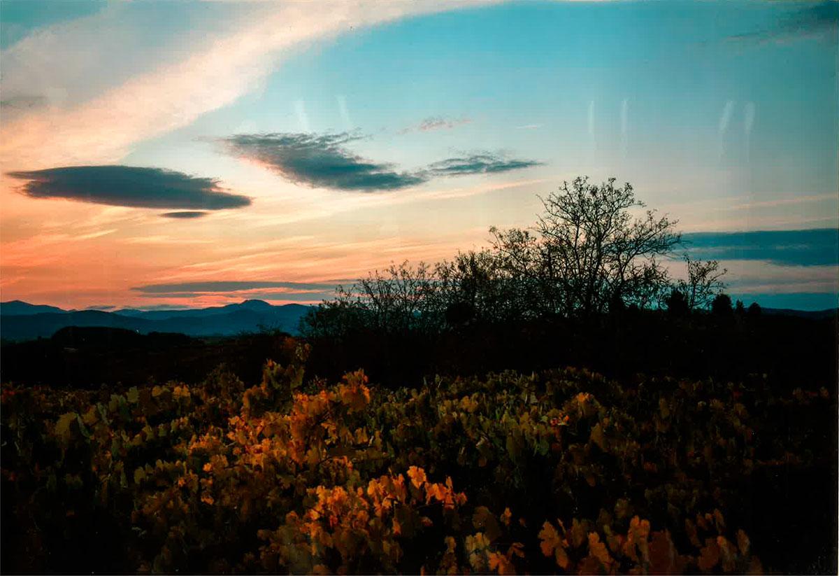 Camponaraya en el Camino. Conoce los ganadores del XXIII Concurso de Fotografía 4